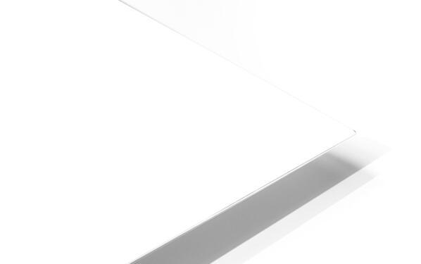 Leopard - B&W HD Sublimation Metal print