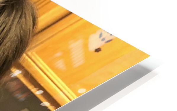 IMG 1326 HD Sublimation Metal print