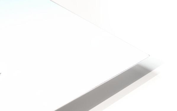 The Vase HD Sublimation Metal print