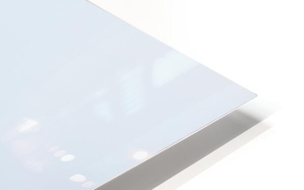 Kestrel HD Sublimation Metal print
