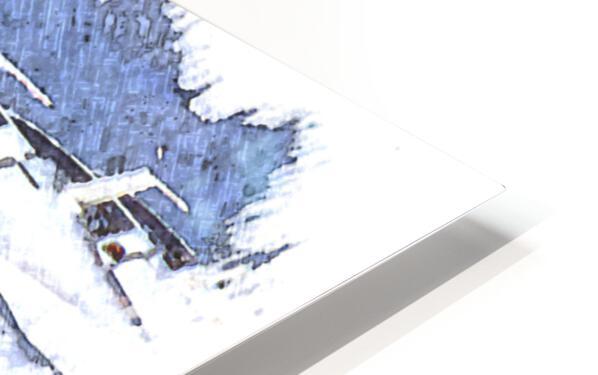 Canadian Snowbirds HD Sublimation Metal print