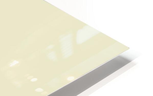 Shhh HD Sublimation Metal print