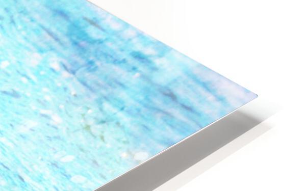 Three Whimbrels HD Sublimation Metal print