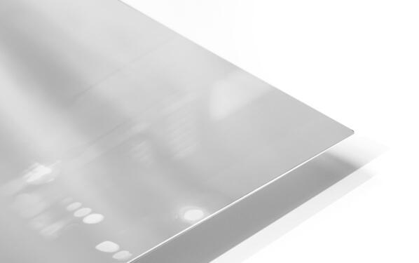 Elegance  HD Sublimation Metal print