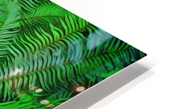 Just Ferns HD Sublimation Metal print