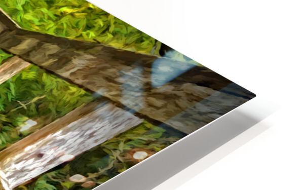 Bridge in the Sanctuary HD Sublimation Metal print
