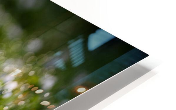Confettis au jardin 2 HD Sublimation Metal print