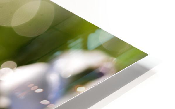 Confettis au jardin 4 Impression de sublimation métal HD