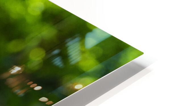 Trio Pavot Impression de sublimation métal HD