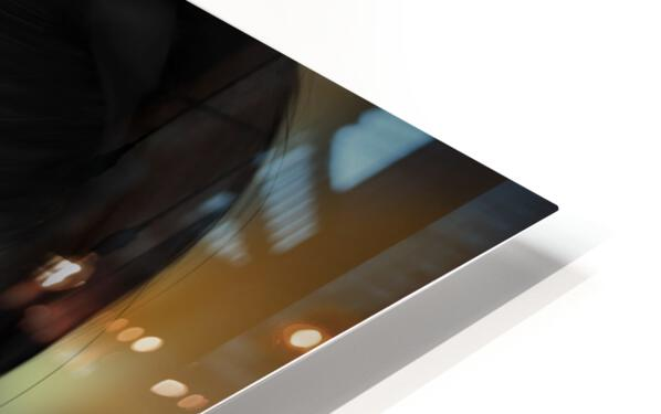 Eves apple HD Sublimation Metal print
