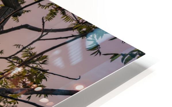 Un lieu pour mediter - A place to meditate HD Sublimation Metal print