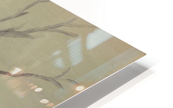 RA 035 - בית קטן בערבה HD Sublimation Metal print