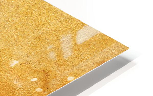 Golden Beach I HD Sublimation Metal print