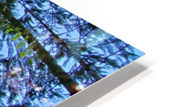 As Above HD Sublimation Metal print