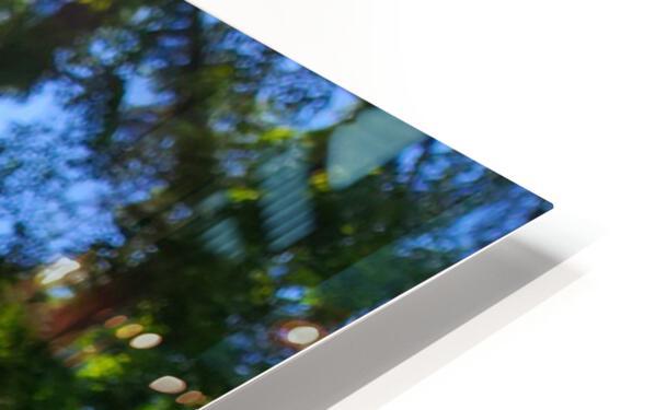 Poppy Blue HD Sublimation Metal print