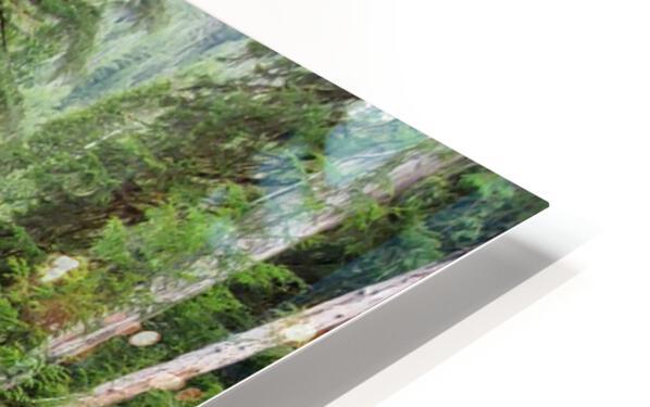 Natures Waterslide HD Sublimation Metal print