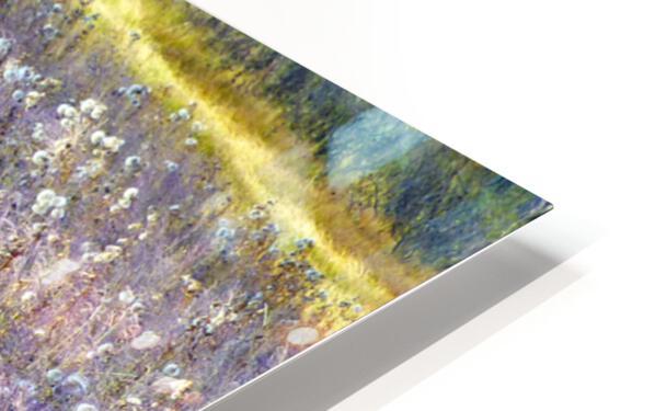 Dream Field HD Sublimation Metal print