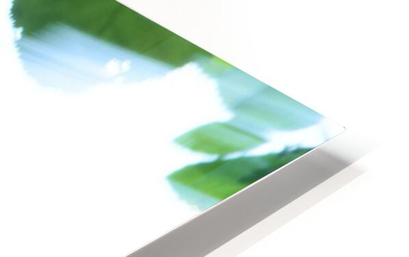 swift HD Sublimation Metal print