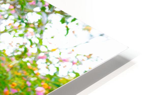 Wild Flowers Waimea Canyon Kauai HD Sublimation Metal print