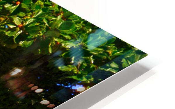 Waikiki Snapshot in Time 2 of 4 HD Sublimation Metal print