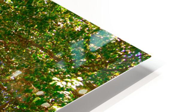Waikiki Snapshot in Time 4 of 4 HD Sublimation Metal print