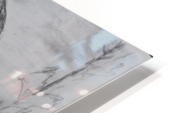 Laxmi HD Sublimation Metal print