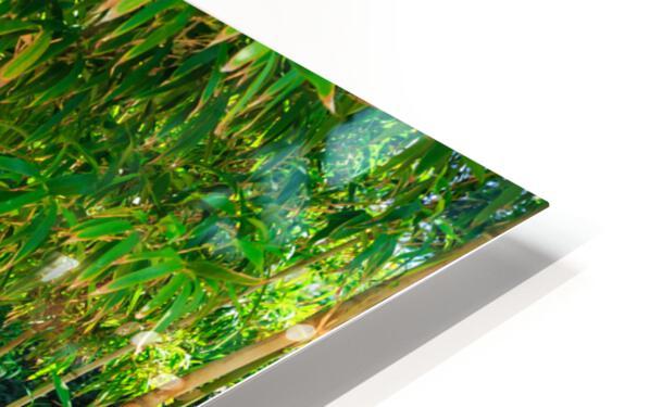 Bamboo HD Sublimation Metal print