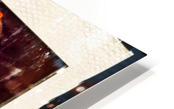 0DA0164E B0A1 4849 9B47 1E0AC7E2099D HD Sublimation Metal print