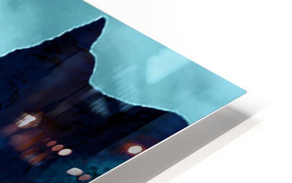 ORCAS LUNARES WIDE 4 HD Sublimation Metal print