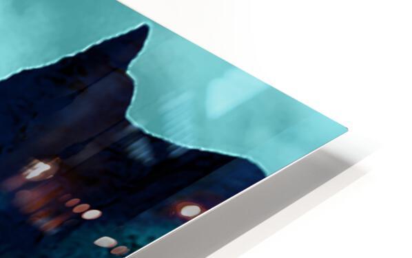 ORCAS LUNARES WIDE 3 HD Sublimation Metal print