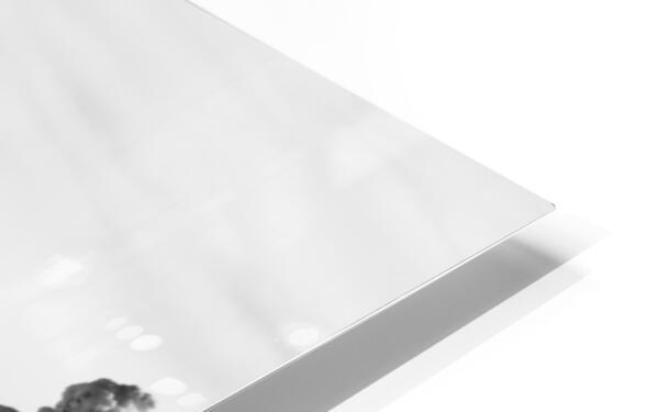 Silver Sliver HD Sublimation Metal print