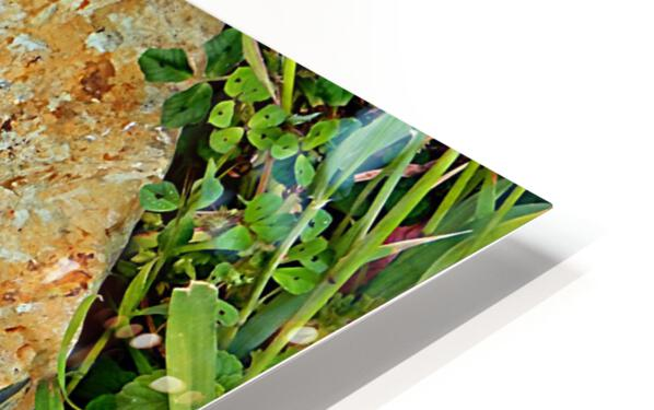 Brown Sandstone Rock With Grass HD Sublimation Metal print