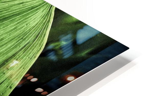 Dainty Drops HD Sublimation Metal print