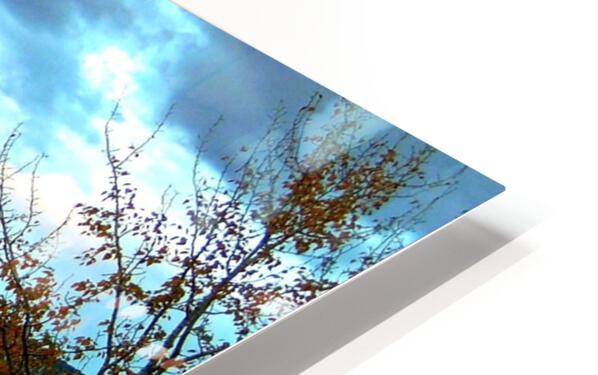 LS031 HD Sublimation Metal print