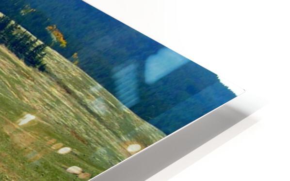 LS028 HD Sublimation Metal print