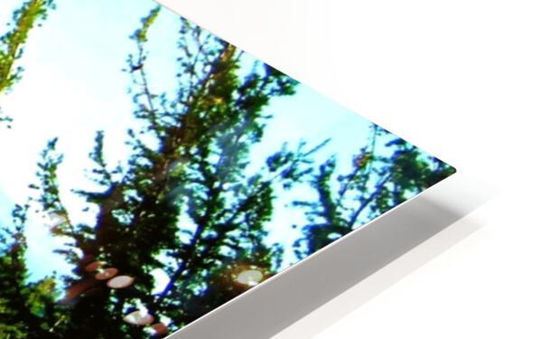 LS027 HD Sublimation Metal print
