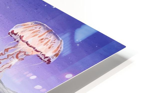 Submarine Shipwreck HD Sublimation Metal print