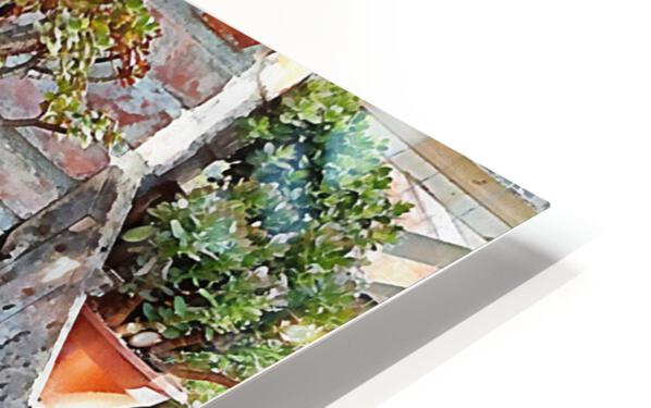 Old Wood Stove With Succulents HD Sublimation Metal print