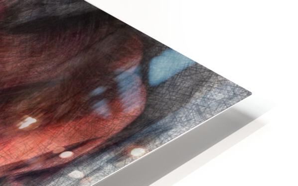 Deconstruction of a Model HD Sublimation Metal print