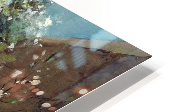 The back garden HD Sublimation Metal print