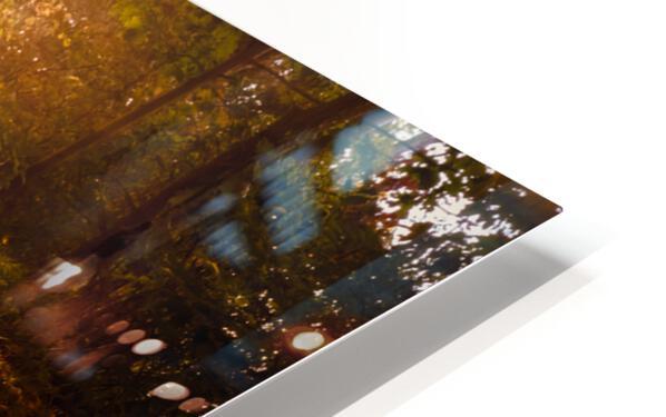 Autumn Sunrise HD Sublimation Metal print
