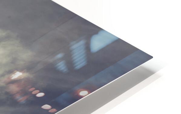 Heron Sunrise HD Sublimation Metal print