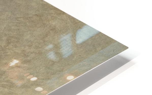 The cardinal HD Sublimation Metal print
