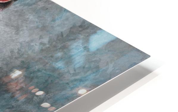 Les Masques HD Sublimation Metal print