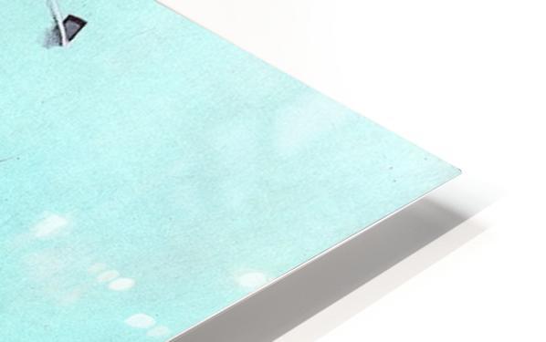 Sharks HD Sublimation Metal print