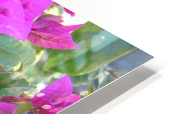 Purple Fusion HD Sublimation Metal print