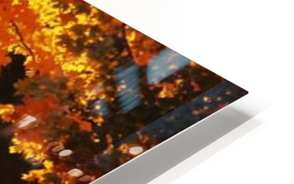 landscape_2_0386 HD Sublimation Metal print