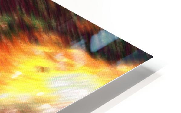 Color Flow F HD Sublimation Metal print