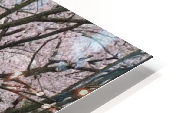landscape_2_0949 HD Sublimation Metal print