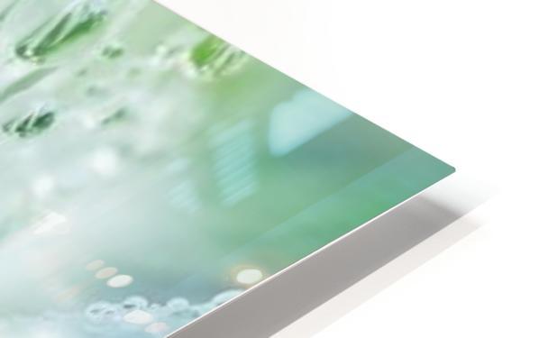 landscape_2_0965 HD Sublimation Metal print